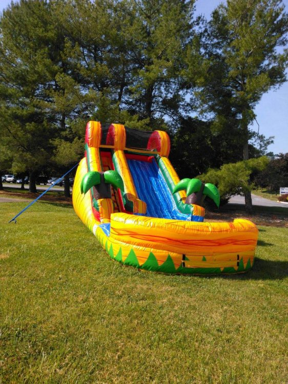 14' Tropical Fiesta Dry Slide