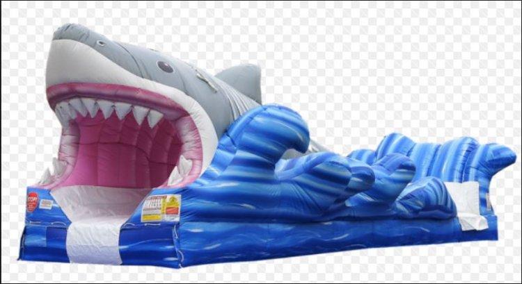 Shark Big Bite Surf & Slide