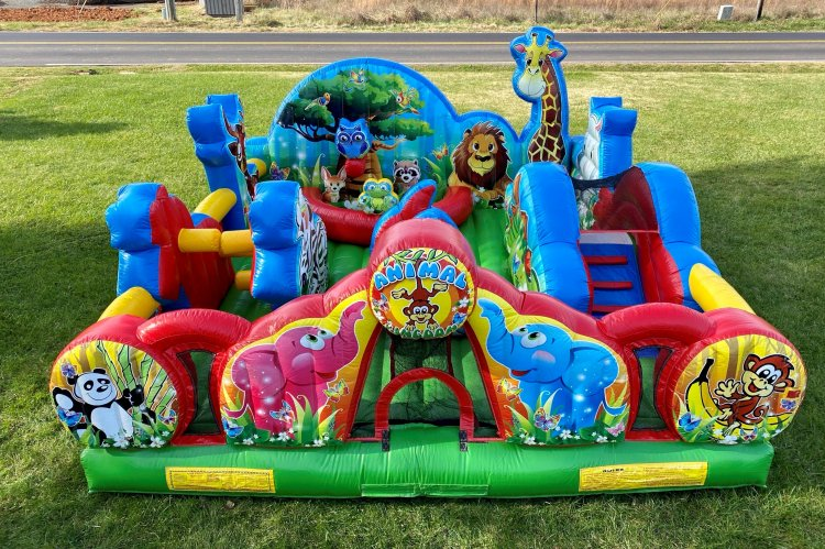 Animal Kingdom (Toddlers 4 & under)